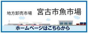 宮古市魚市場バナー.jpg